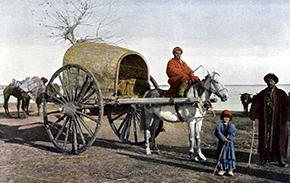 bukharan-wagon-thumb-aispsc-108