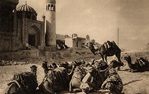 camel-caravan-thumb-aissnb-112